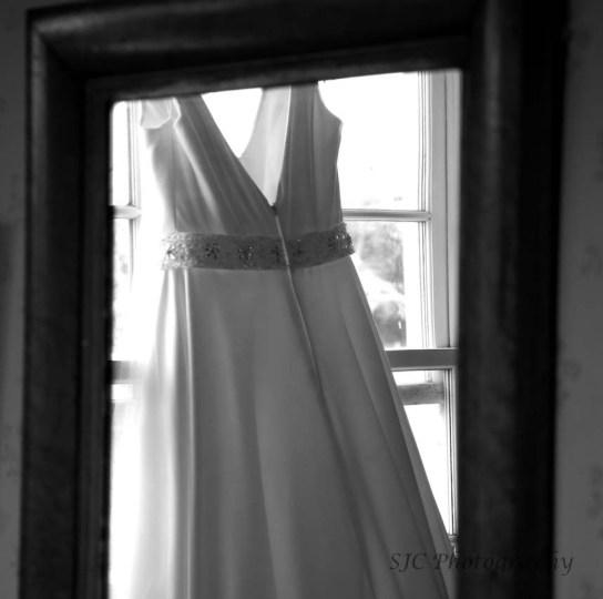 3008005 dress 1