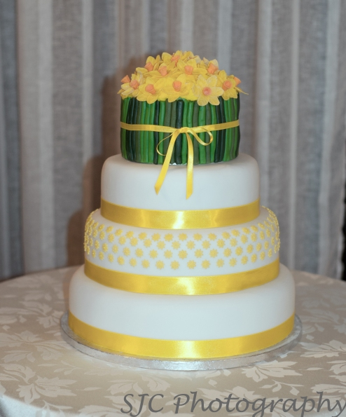 cake009