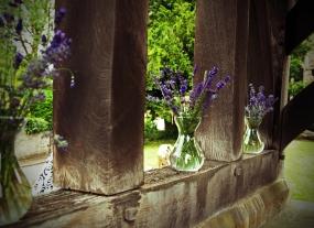 lavender012