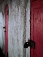 brighton Red doors small